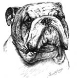 Bulldog Personalised Greetings Card
